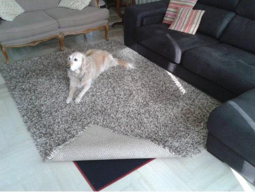 calefactor bajo alfombra